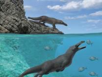 Otter-Wal