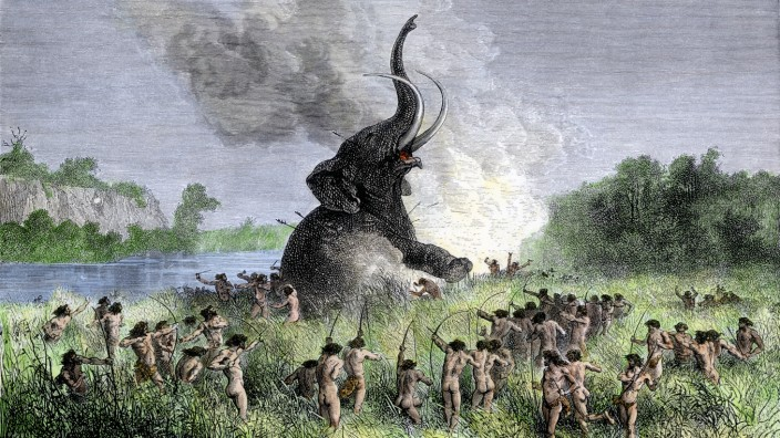 Prehistoric hunters surrounding a wooly mammoth / Illustr.