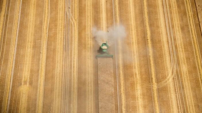 Getreideernte in Brandenburg