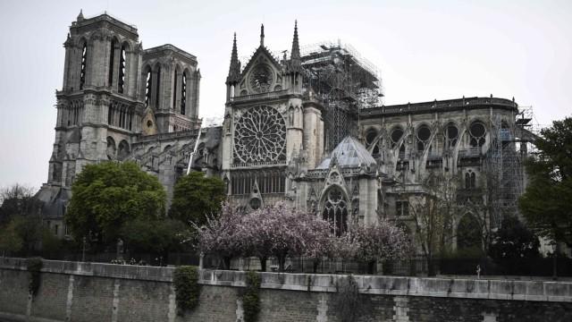 Notre-Dame Brand Wiederaufbau
