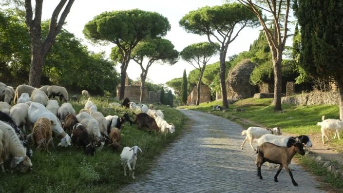 Via Appia Rome Rom Römerstraße