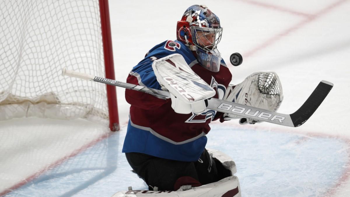 NHL - Schildkröte mit Reflex