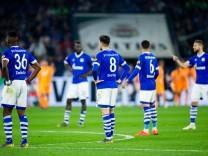 FC Schalke 04 - 1899 Hoffenheim