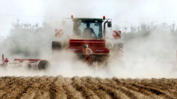 Trockenheit in der Landwirtschaft