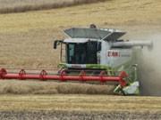 EU-Agrarsubventionen, Mähdrescher, Foto: AP