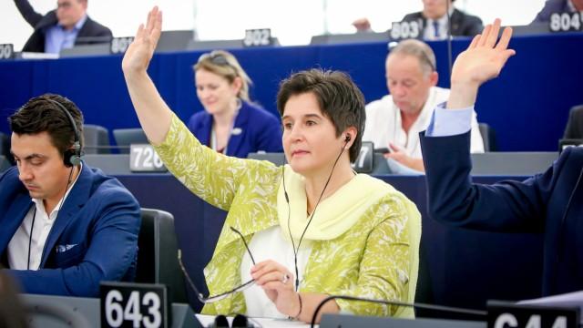Europawahl Europawahl