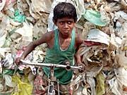 Müllsammler in Indien; dpa