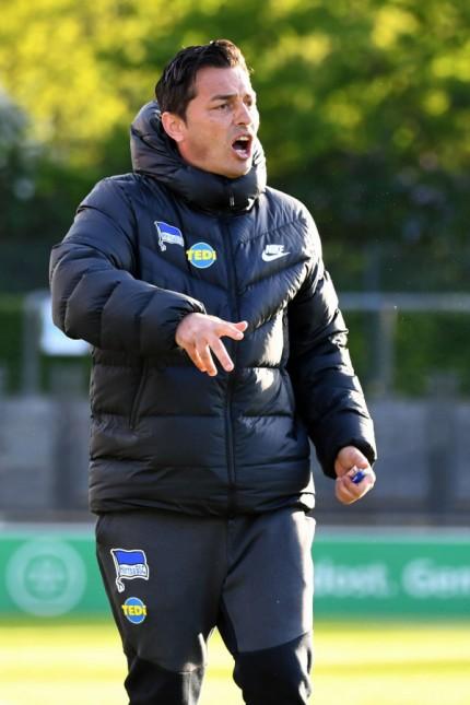 Fussball Herren Regionalliga Nordost Saison 2018 2019 33 Spieltag Hertha BSC II 1 FC Lok L; Ante Covic