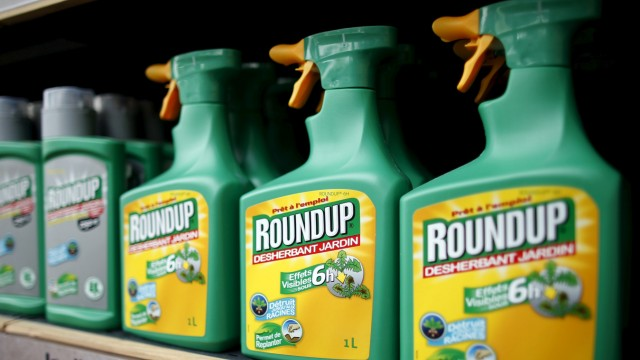 File photo of Monsanto's Roundup weedkiller atomizers displayed for sale at a garden shop at Bonneuil-Sur-Marne near Paris
