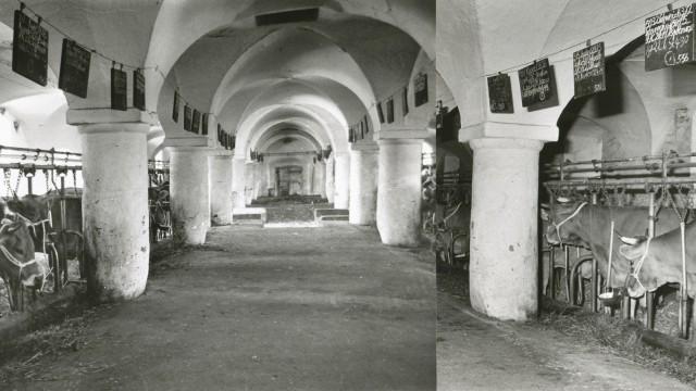 Kloster Benediktbeuern ist seit über 60 Jahren klimaneutral.