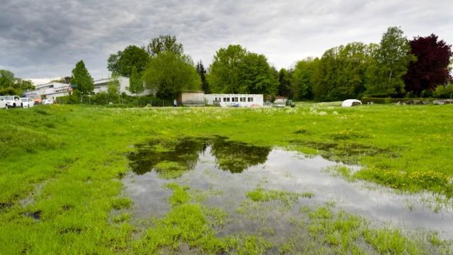Überschwemmte Wiese bei KiGa St. Elisabeth
