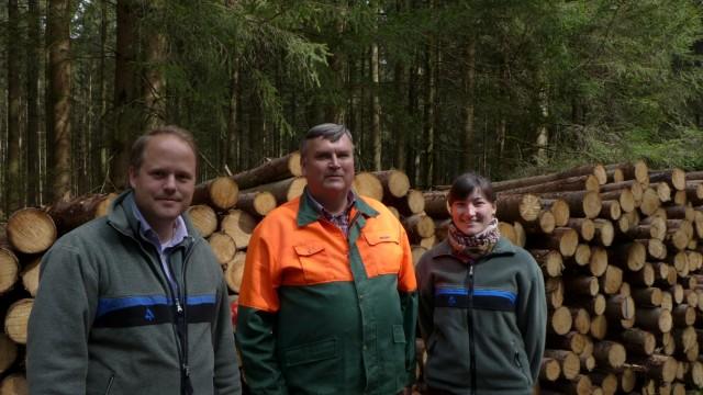 Forstwirtschaft Forstwirtschaft
