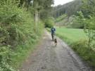 Dogscooting: Tierischer Outdoorsport (Vorschaubild)