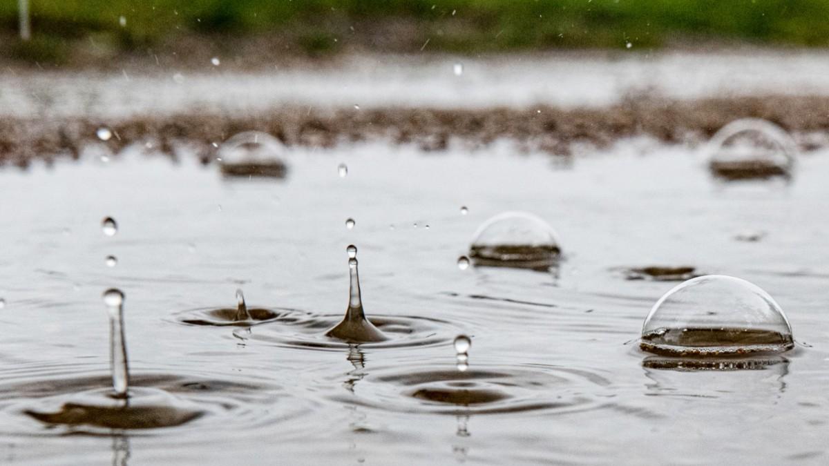 Wetterdienst erwartet Dauerregen