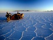 Uyuni Salzsee Bolivien, dpa