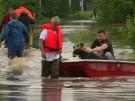 Tierheim überschwemmt - Nachbarn helfen (Vorschaubild)