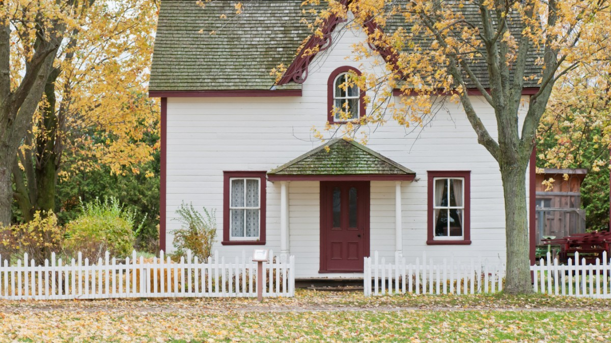 Wer sucht ein Zuhause?