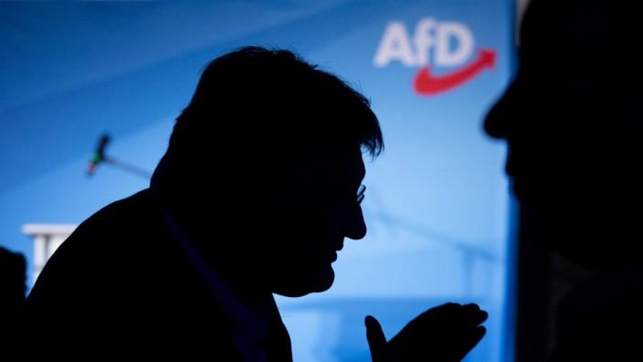 Jörg Meuthen auf einer AfD-Wahlparty zur Europawahl 2019