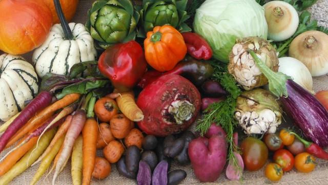 Bunt und lecker: Grillgenuss mit Gemüse und Obst