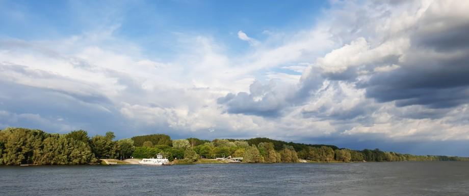 Wald dominiert die Uferlandschaft an der Donau in Ungarn.