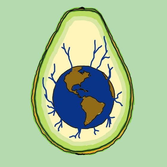 avocado wasserverbrauch vergleich