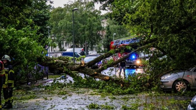 Unwetter - Verwüstungen nach einem Gewitter über Brandenburg und Berlin