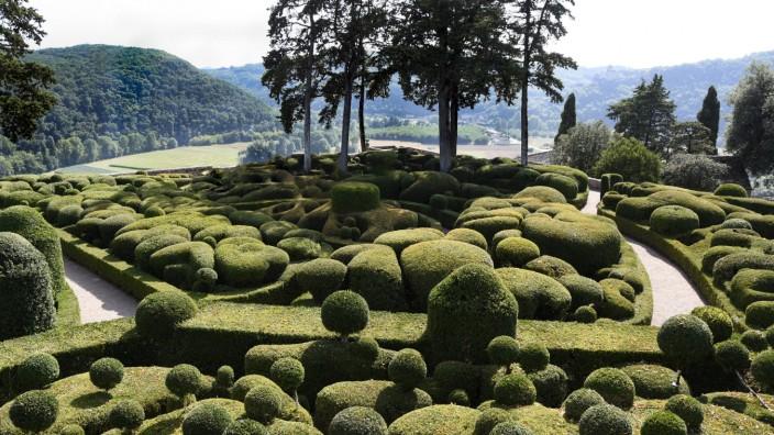 Buis Buxus sempervirens Art topiaire Jardins de Marqueyssac Dordogne PUBLICATIONxINxGERxSUIxAUTxHUNx
