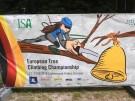 Baumpfleger klettern um die Wette auf Rügen (Vorschaubild)