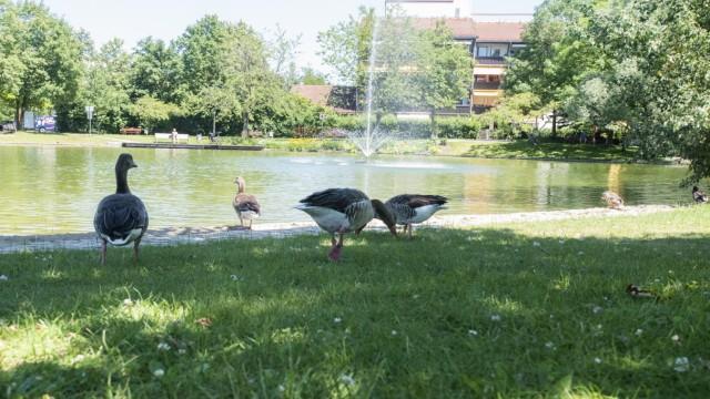 Unterhaching, Ortspark, See, der kleine See ist erholsamer Treffpunkt für Jung und Alt, inzwischen hat er sich farblich auch ziemlich erholt und sieht ganz klar aus,  Foto: Angelika Bardehle