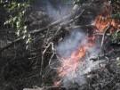 Brand in Lieberoser Heide - Lage unverändert (Vorschaubild)