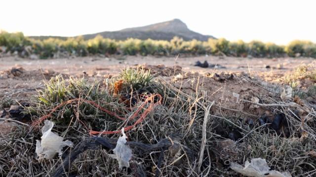 Umwelt Spanien