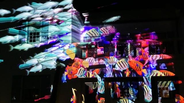 Digital Art Space