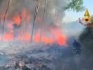 Waldbrand: Ort auf Sardinien evakuiert (Vorschaubild)