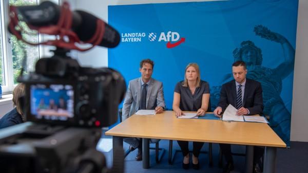 Die AfD in Bayern trifft sich zum Sonderparteitag in Greding.