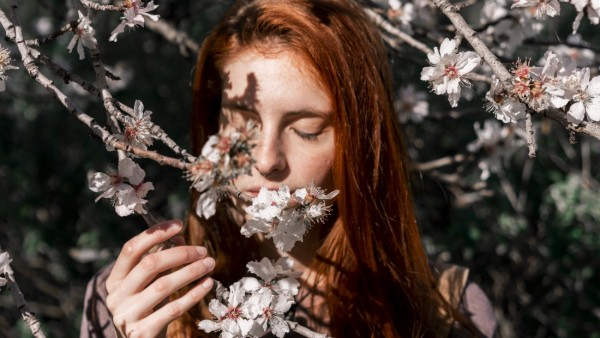 Redheaded woman smelling tree blossoms model released Symbolfoto PUBLICATIONxINxGERxSUIxAUTxHUNxONLY