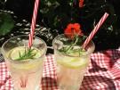 Rezept Sommerdrink Zitronenlimonade mit Rosmarin alkoholfrei