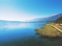 Reeds along the shore of Lake Prespa