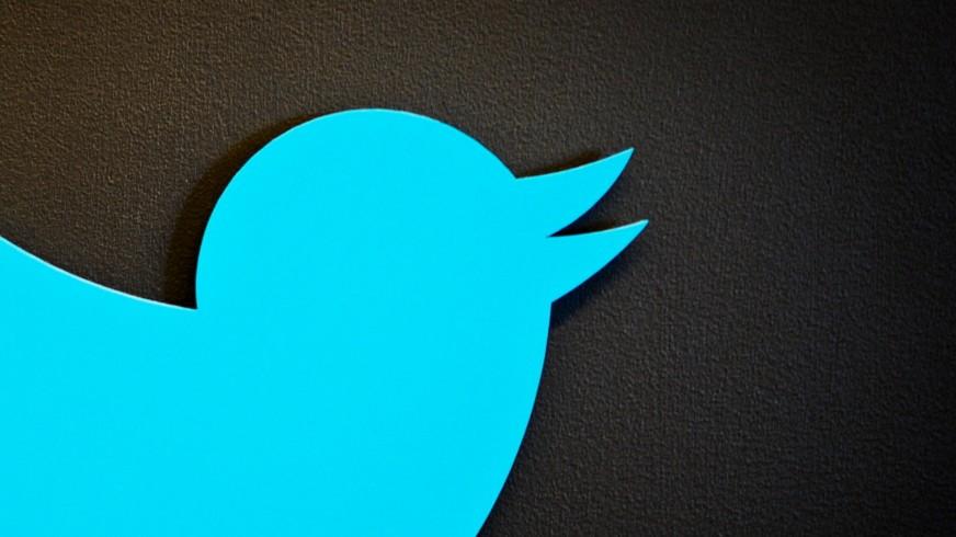 Eine Partei twitterisiert sich