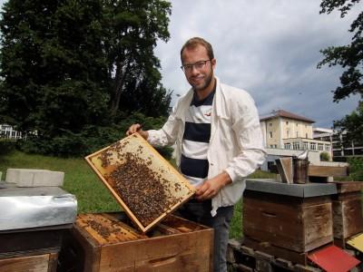"""Oberbayern: """"Manche Imker haben nicht einen Tropfen Honig geerntet"""""""