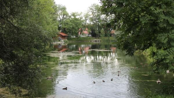Badweiher