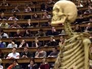 Hörsaal Studenten Bologna-Reform Studieren im Auslaufmodell, dpa