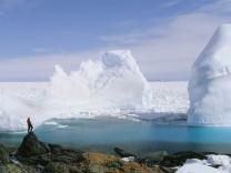 Eisberge ziehen an der Felsküste von Quirpon Island in Neufundland vorbei.