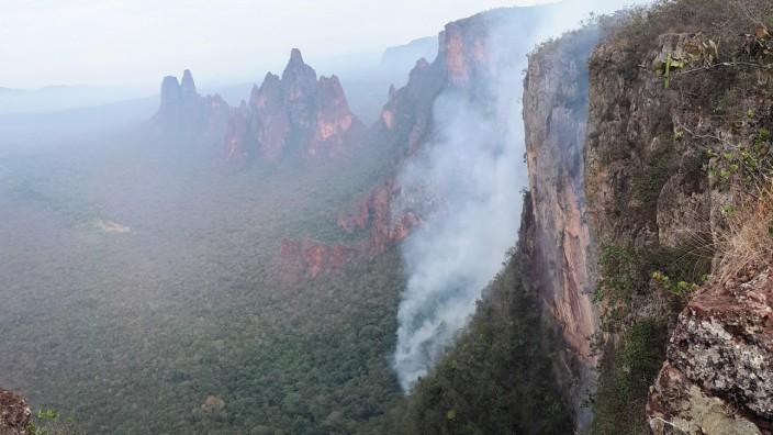 Brände im Amazonas