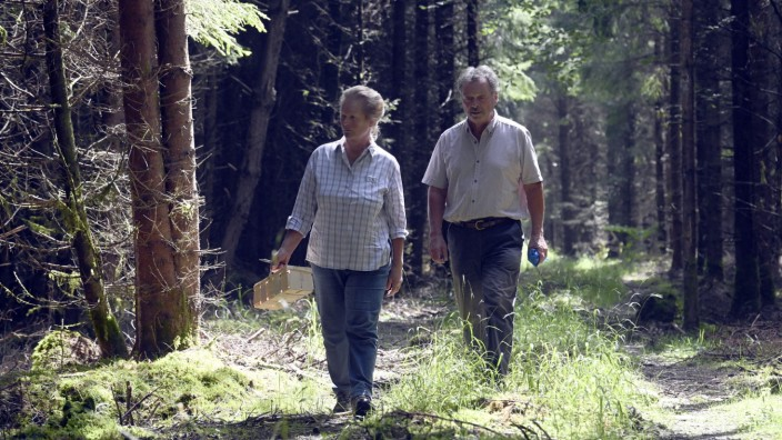 Mit Körbchen und Pilzmesser ausgestattet durchstreifen Hildegard Oblegor und ihr Mann Fritz Anzinger den Wald in Aying.