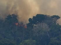 Walbrände am Amazonas