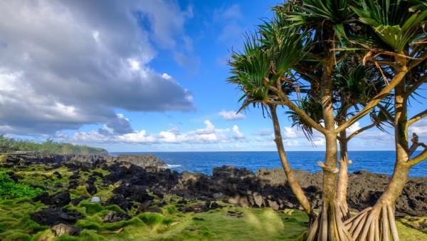 Küste von La Réunion