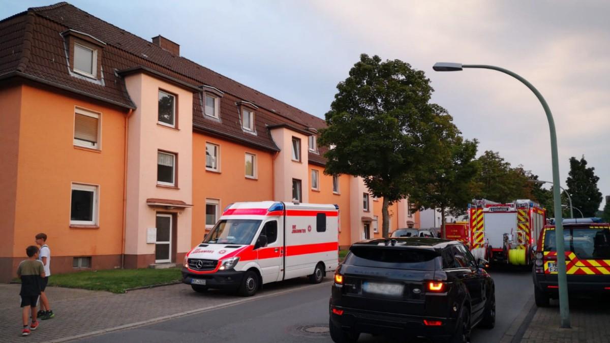 Herne: Kobra entwischt - vier Häuser evakuiert