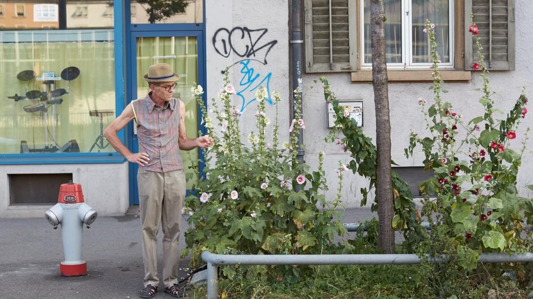 Blumensamen in Zürich - Wer sät, wird ernten
