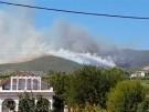 Feuer wütet auf griechischer Insel (Vorschaubild)