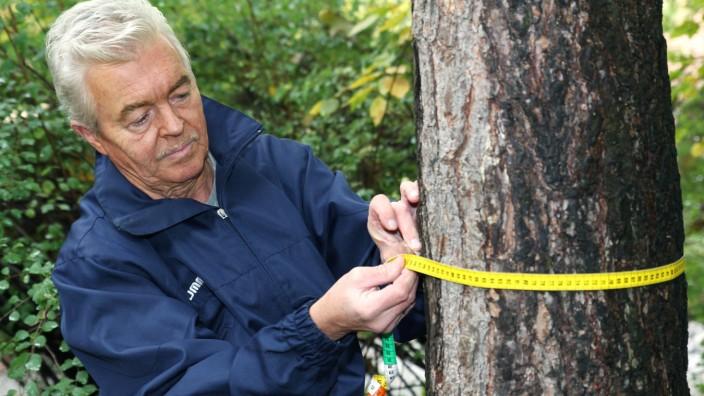 Johann Kramer, Baumschutzbeauftragter in Moosach, 2013